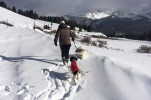 Winter Trek and Trains, Telluride, CO