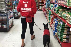 In Store Training, Farmington, NM