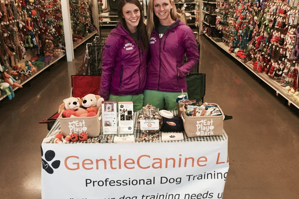 Amber and Morgan of Gentle Canine